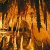 Yarrangobilly Caves,