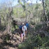 Hiking through the cyclone damage