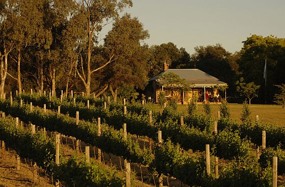 Fox Creek Cellar Door