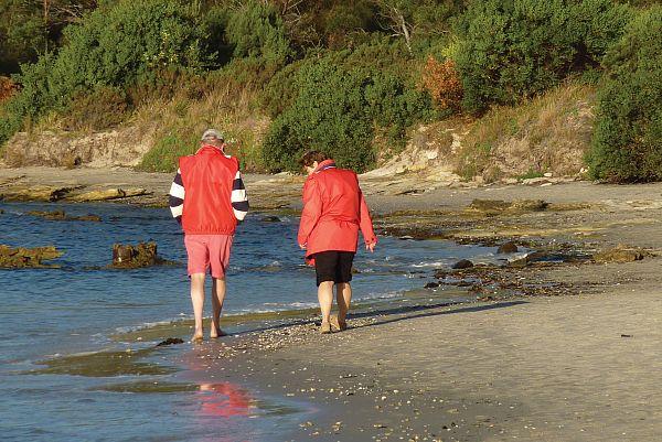 Beach walking, Shelley Beach